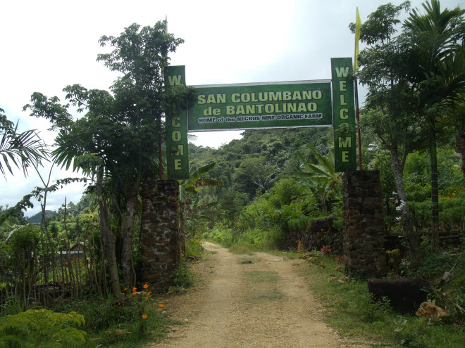 Welcome to Negros Nine